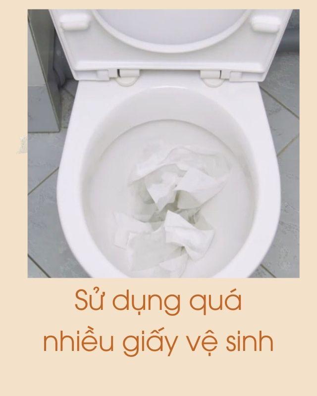 sử dụng quá nhiều giấy vệ sinh