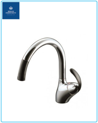 Vòi rửa chén nóng lạnh ToTo TKN34PBRR
